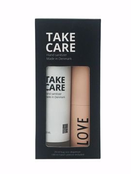 TAKE CARE Hand Sanitizer 100 ml + Bag size spray